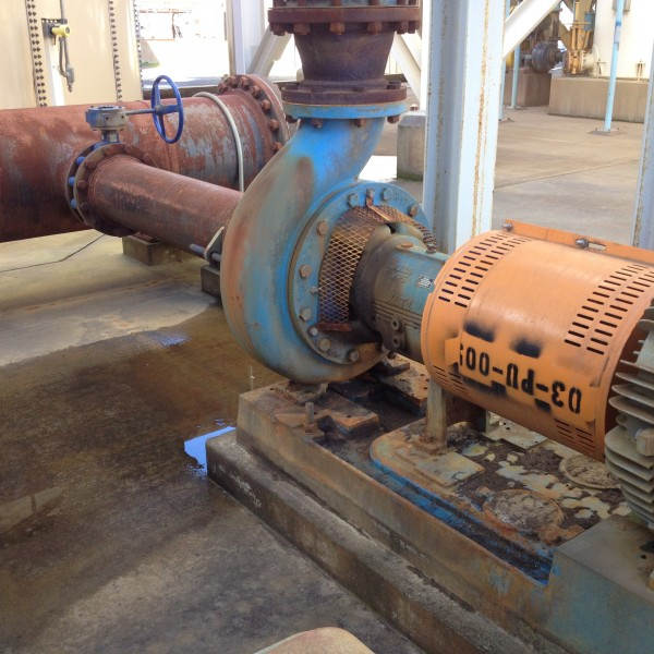 GOULDS Model 3196, Size 8 X 10-17 Process Water Centrifugal Pump with 100 HP motor