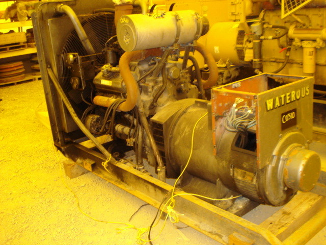 Newage Stamford (waterhouse) 313 Kva Diesel Operated Generator Set